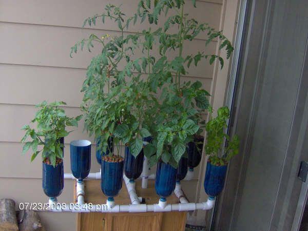 PVC Hydroponic garden - hubby is wanting to try hydroponic gardening.
