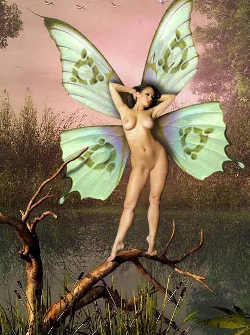 Erotic fairy art