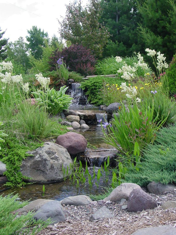 17 best images about garden on pinterest gardens patio for Garden pond life