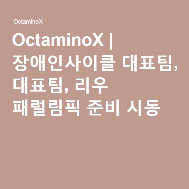 OctaminoX | 장애인사이클 대표팀, 리우 패럴림픽 준비 시동