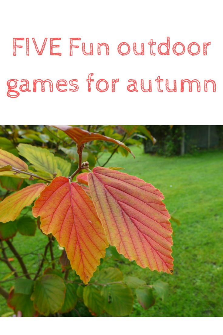 Five fun family games for autumn time. Perfect for children to get moving outside as well as developing gross motor skills and having fun. Perfect ideas for family fun this autumn