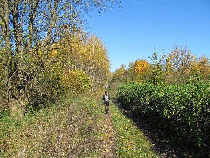 Idziemy drogą szutrową w kierunku wsi. Dochodzimy do drogi z płyt betonowych. Dalej zielonym szlakiem rowerowym do kościoła gotyckiego.  www.it.mragowo.pl