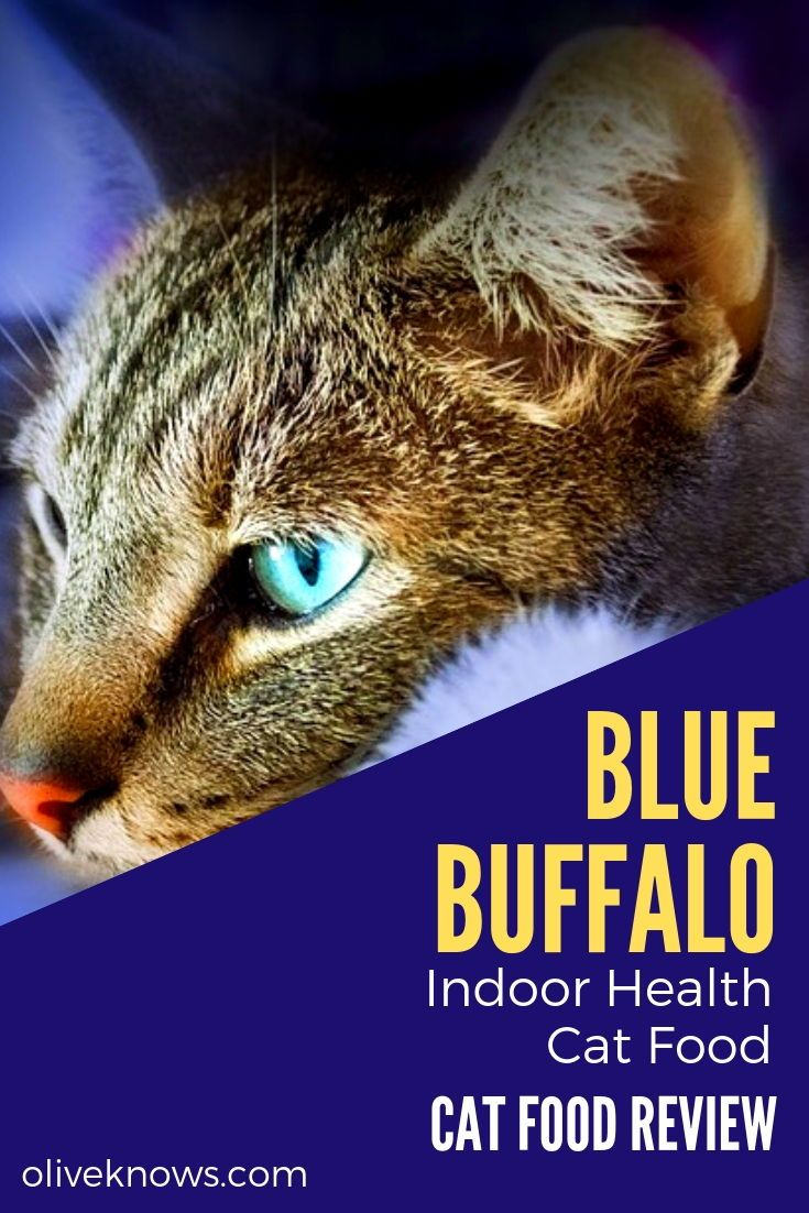 Blue Buffalo Indoor Health Cat Food Review Oliveknows Cat Food Cat Food Reviews Cats