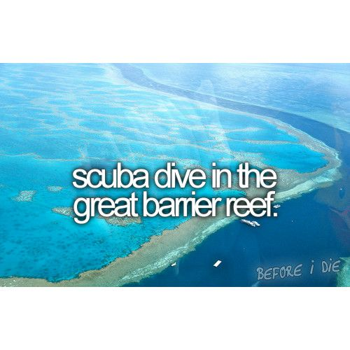 scuba dive in the great barrier reef | bucket list | before I die