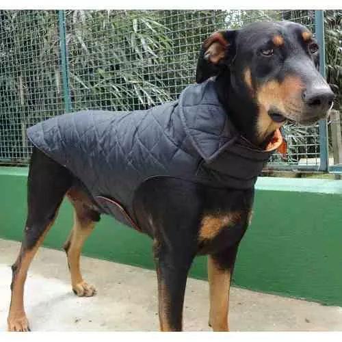 Capa De Nylon Metalassê Para Cães De Médio A Grande Porte - R$ 189,90