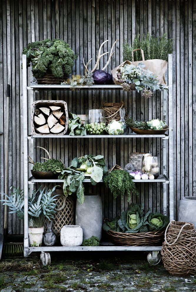 broste copenhagen (have this same shelving - in black, w paint same & put on patio) AWESOME