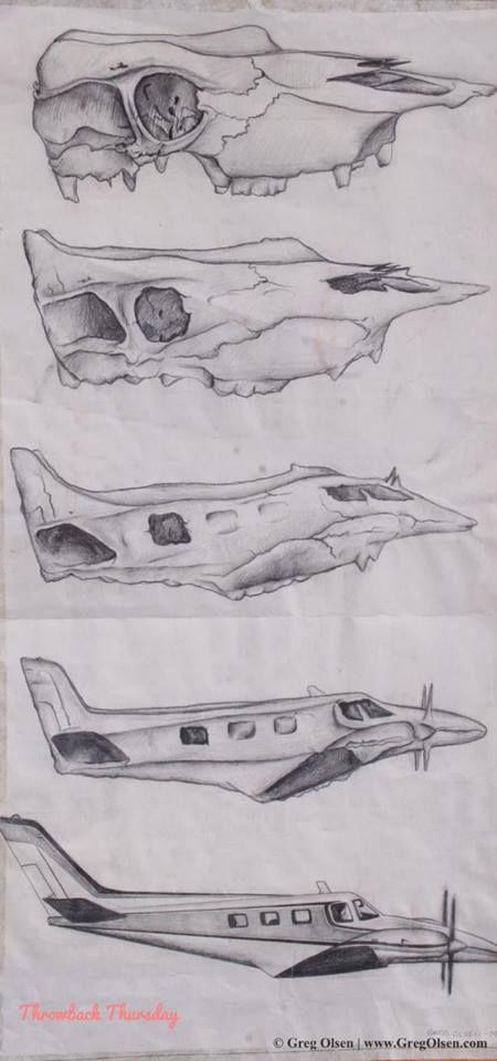 metamorphosis drawing