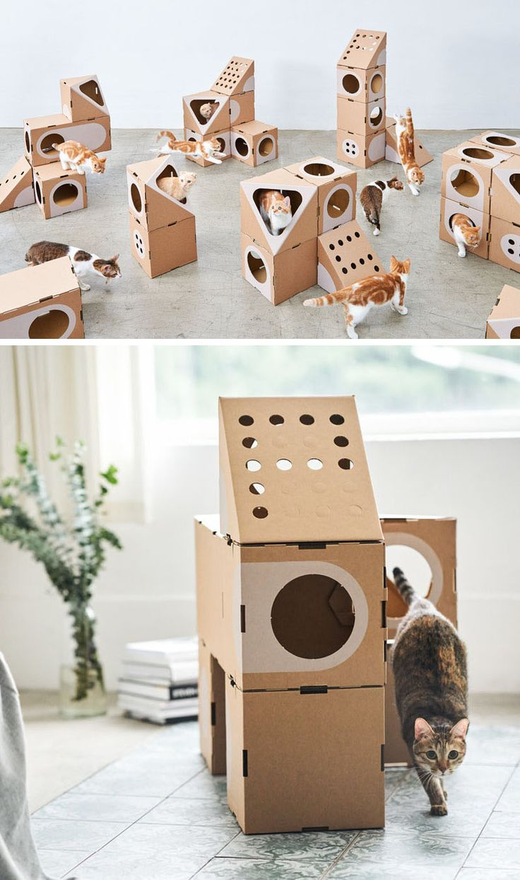 A Cat Thing Have Created A Modular Cardboard Furniture Collection For Cats