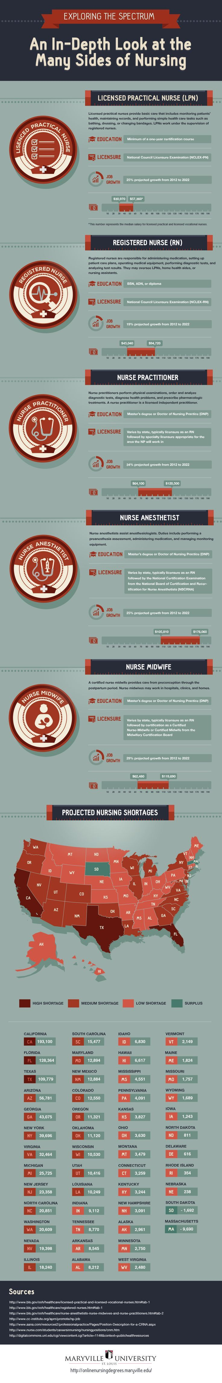 Oncology Nurse Resume%0A INFOGRAPHIC  An InDepth Look At The Many Sides of Nursing