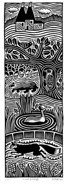 ✽ 'kent wildlife' - hugh ribbans - linocut