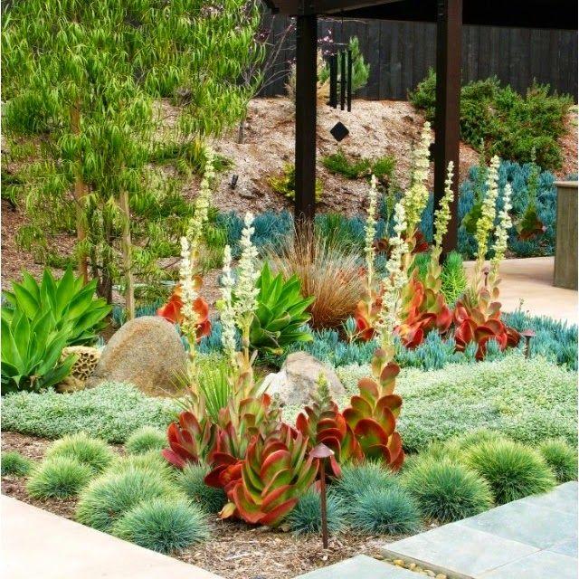 Garden Design With Modern Plant Landscape Ideas Simply: 26 Best Park Strips Images On Pinterest