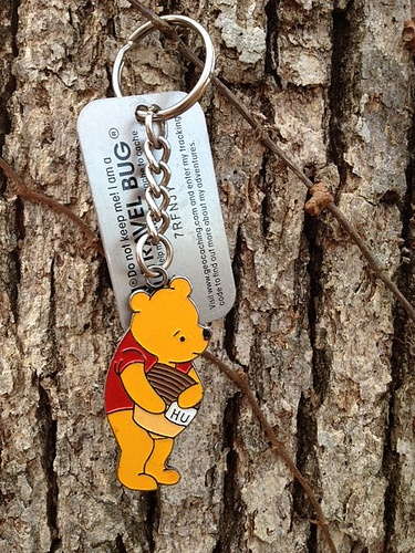 Looks like Winnie the Pooh is travelling the world, thanks to a Travel Bug tag!