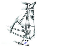 Ever wondered why the difference is between a 5cm shank and the 7cm shank, or even a 9cm shank your double bridle? find out here:  http://www.bitbankaustralia.com.au/allabouthorsebits/double-bridles-and-the-length-of-the-shanks/