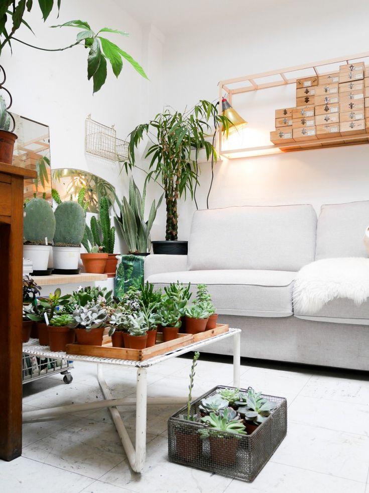 mama petula d coration v g tale terrarium pinterest vegetal d corations et plante d corative. Black Bedroom Furniture Sets. Home Design Ideas
