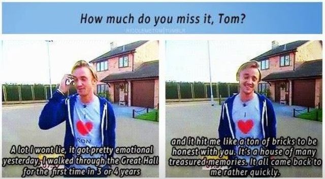 Tom Felton - Aw, he's wearing his I <3 Ron Weasley shirt! His and Rupert's bromance is adorable.