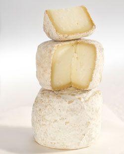 Crottin de Chavignol French Cheese // region : Centre Val de Loire // milk : goat // (queso frances, fromage aop).................. Crédits photo : V. RIBAUT / Les Studios Associés / CNIEL