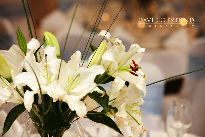 Quality Hotel Ballina - we will help make your dream wedding day come true.
