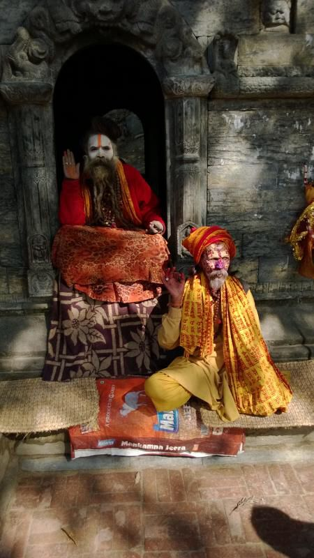 Sadu. The holy man in Pashupatinath
