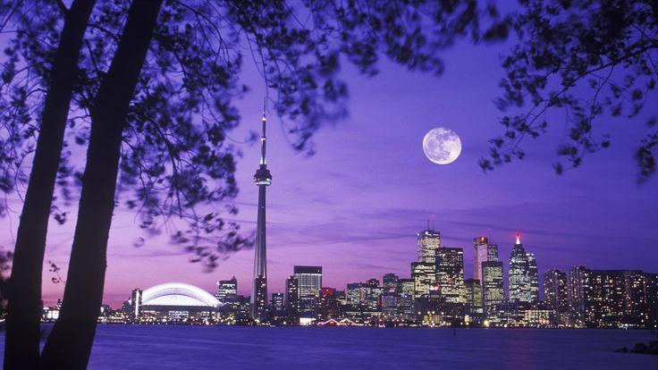 Toronto Skyline Night Moon Scenery Canada