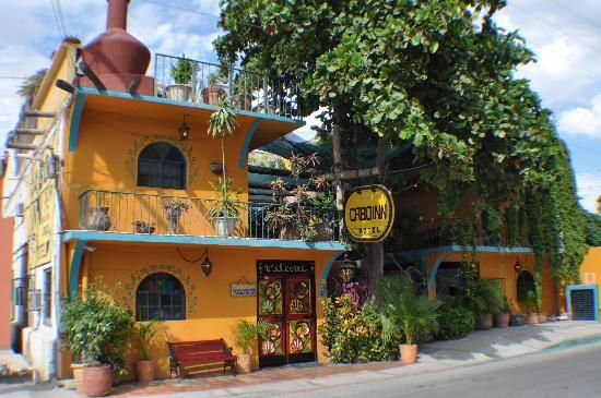 Hotels and hostels. rankings, reviews and pricing. (Cabo Inn Hostel..i will stay here one day!)