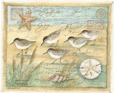 Susan Winget #birds