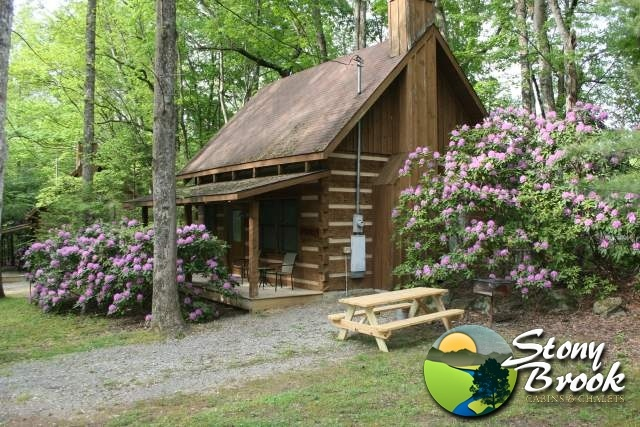 17 best images about studio on pinterest backyard for Creekside cabins in pigeon forge tn