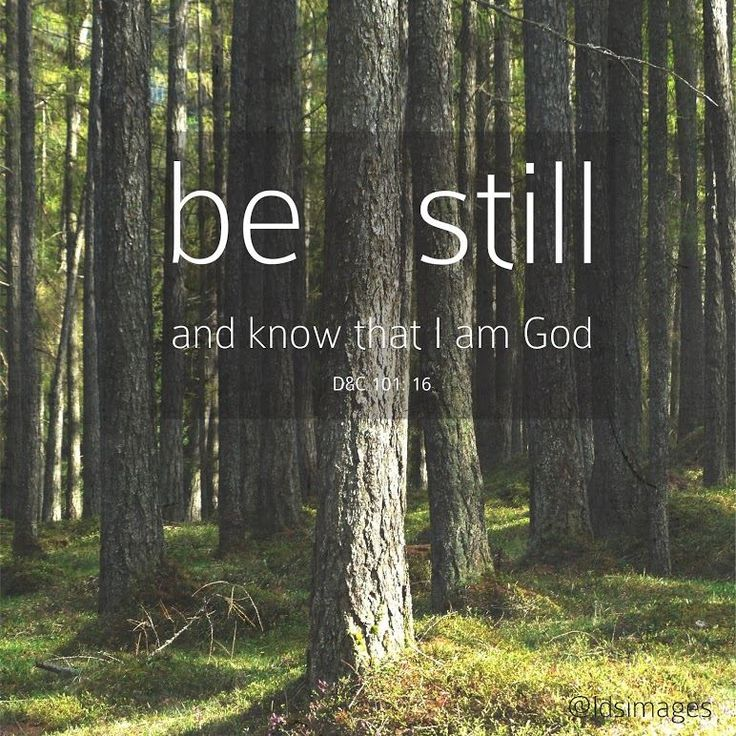 Godly Wallpaper Quotes Quot Be Still And Know That I Am God Quot D Amp C 101 16 Quotes