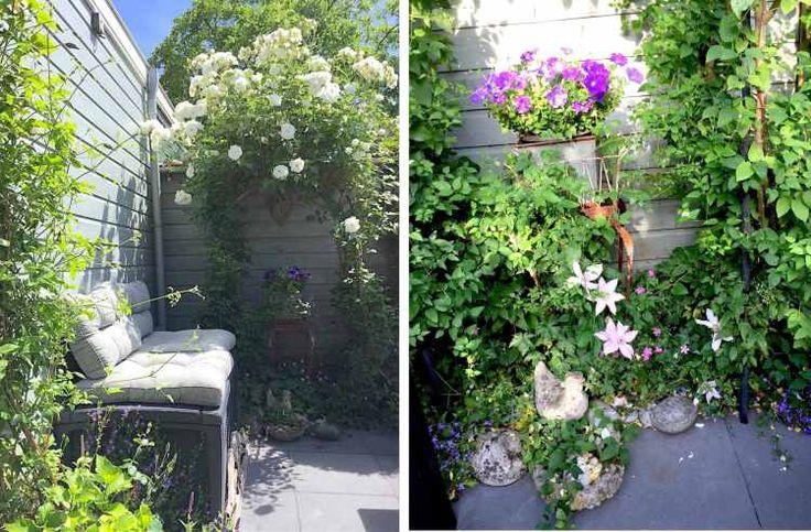 opbergbox tuinkussens, tuin inrichting