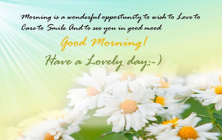 Good Morning! Have A Lovely Day morning good morning morning quotes good morning quotes good morning greetings