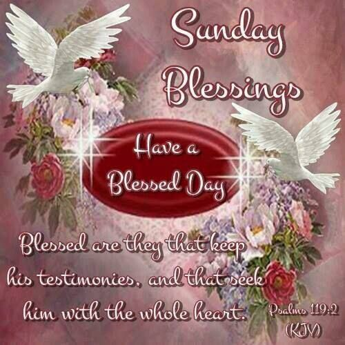 Sunday Blessings, Psalms 119:2- Have a Blessed Day.