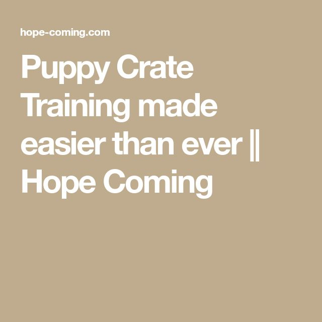 Puppy Crate Training made easier than ever || Hope Coming