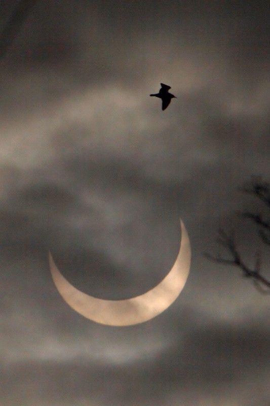 Zaćmienie Słońca w Polsce nie będzie widoczne? Prognoza pogody na 20.03.2015 na Hotplota.pl! - najwięcej plotek ze świata gwiazd - www.eska.pl/hotplota