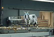 The 13 Most Hilarious Screaming Goat Videos: Geico's Screaming Scapegoat Commercial