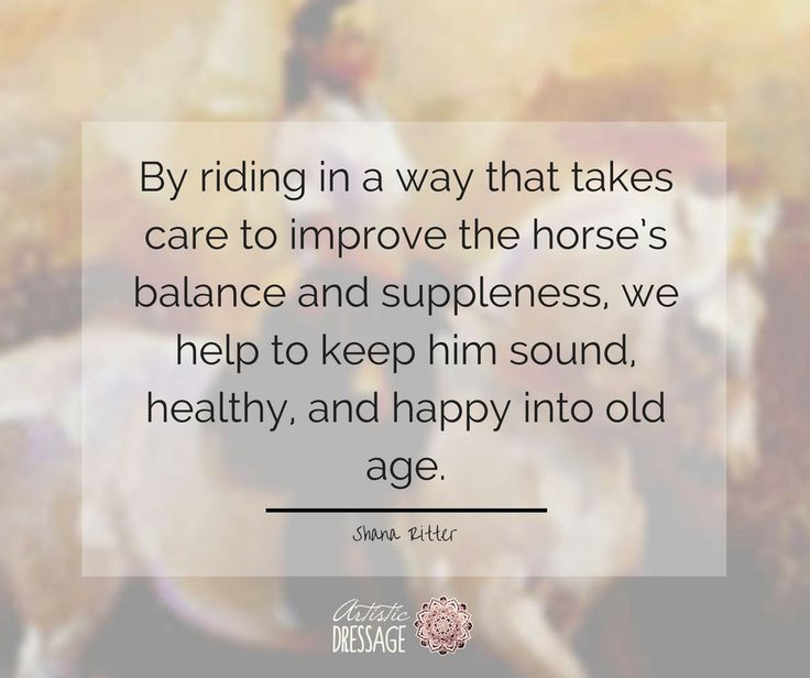 """""""By riding in a way that takes care to improve the horse's balance and suppleness, we help to keep him sound, healthy, and happy into old age."""" - Shana Ritter  artisticdressage.com"""