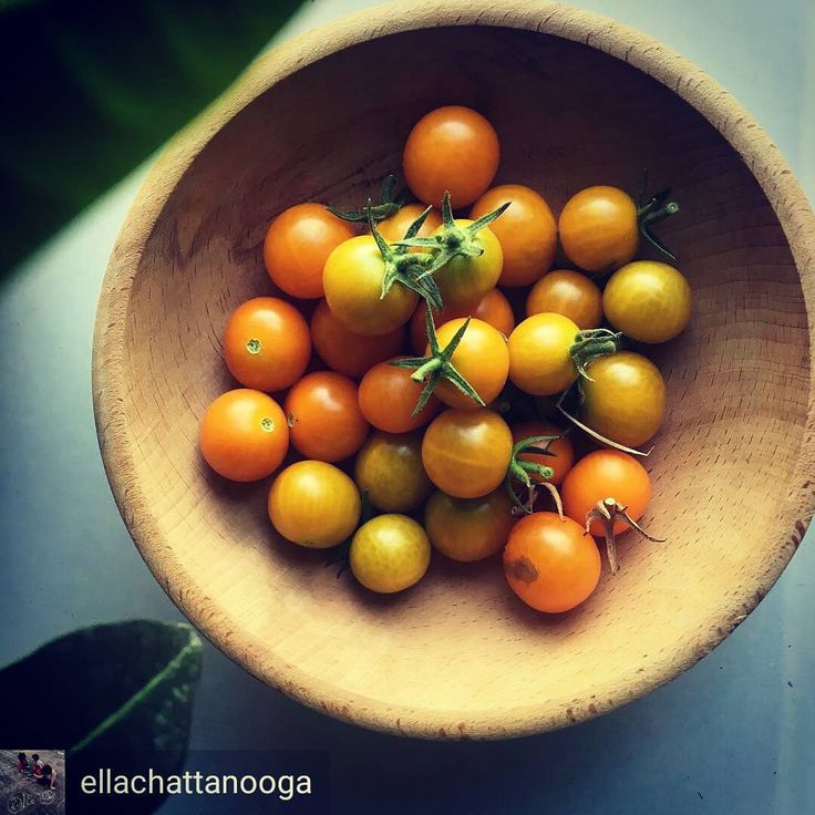 I love #harvest time come midsummer.  #farmersmarket here we come!  @Regrann from @ellachattanooga -  Today's harvest from our East Lake Park community gardens!! (My two year old picks them and I carry the bowl ) #eastlakepark #communitygarden #growhope #Chattanooga #tomatoes #orange #yellow #harvest #tomates #weegardeners #Regrann #startuplife