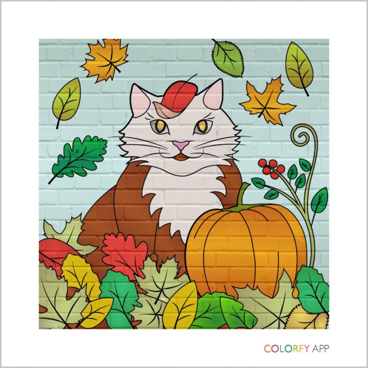 My 2nd colouring result by colorfy