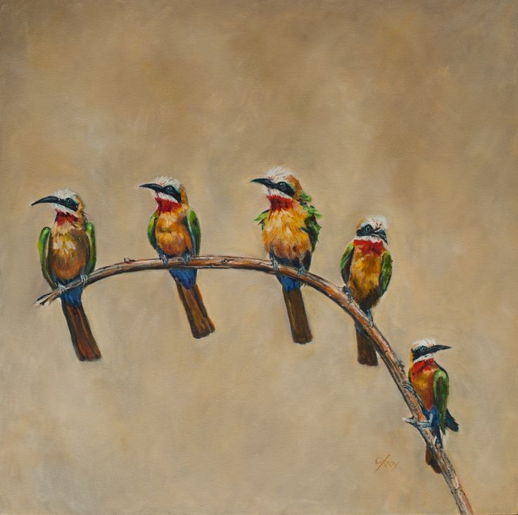 Beeaters in oils on canvas