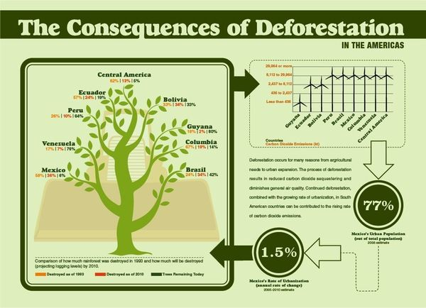 A study of the tropical rain forest and the causes of its destruction
