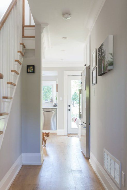 Colour Spotlight Benjamin Moore Collingwood Oc 28