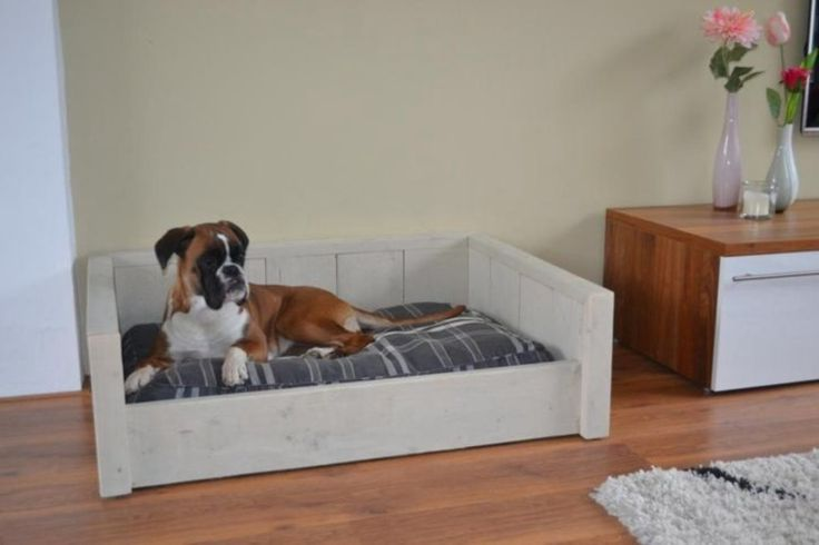Update, we hebben er 1 gemaakt, foto's geplaatst! Steigerhouten hondenmand, wat zijn de kosten? | HondenForum