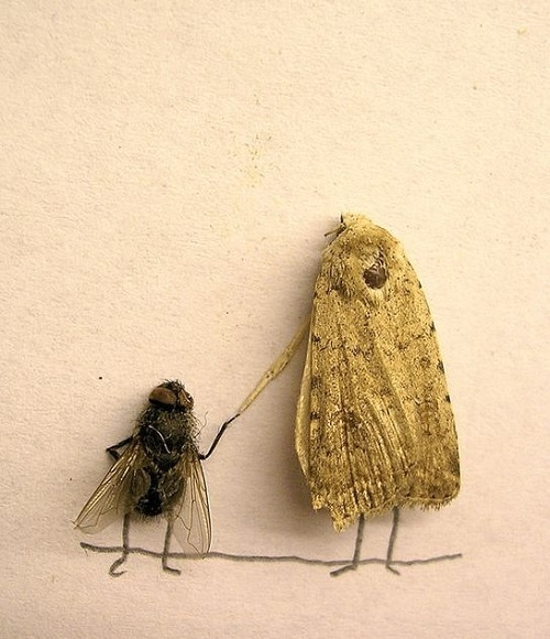 Magnus Muhr has a very creative mind. He/She included dead insects in their piece in an ingenious way. Awesome!