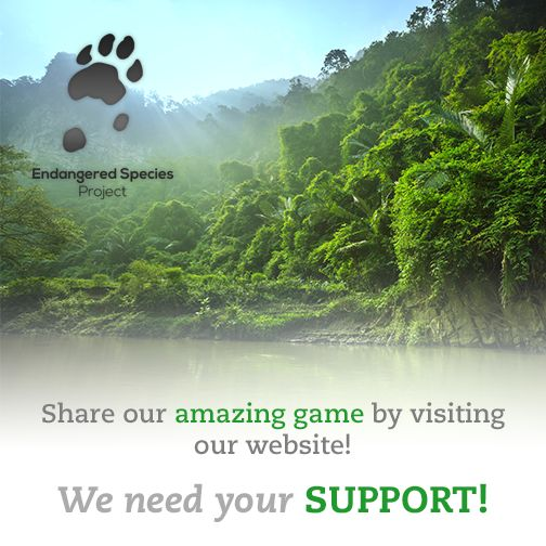 Share the Endangered Species game: www.bit.ly/1FiX5GD