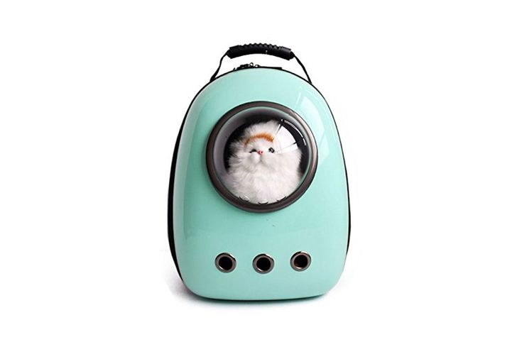 好奇心を刺激。宇宙船カプセル型キャリーで、ペットと快適に出かけよう | ROOMIE(ルーミー)