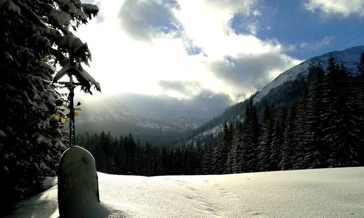 W oczekiwaniu na śnieg zapraszamy na spacer po Dolinie Chochołowskiej i Jarząbczej. Trasa dla każdego.