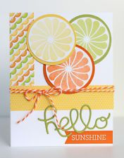 Handmade Card Kit - Hello Sunshine - Stampin Up