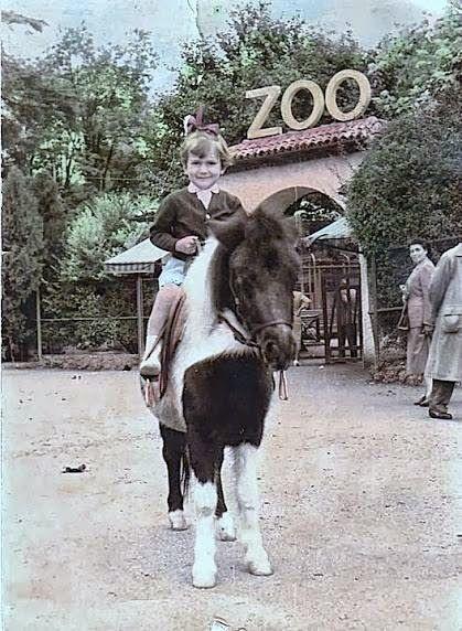 Lo zoo dei Giardini Pubblici di Milano Milano, Animali