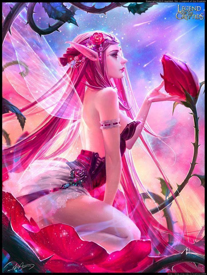 Pink pixie,