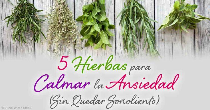 Hay hierbas naturales que pueden ayudar en el tratamiento de la ansiedad en general y que ayudan a calmar sin provocar sueño. http://articulos.mercola.com/sitios/articulos/archivo/2015/03/10/5-hierbas-que-ayudan-con-la-ansiedad.aspx