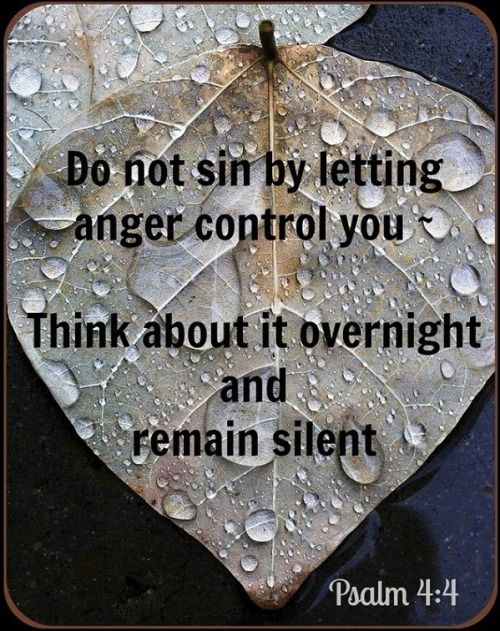 """""""Psalm 4:4 (NLT) Don't sin by letting anger control you. Think about it overnight and remain silent. """""""