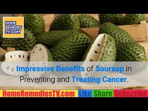 IMPRESSIVE Benefits of Soursop FRUIT in Preventing AND Treating CANCER. Soursop Cancer CURE Benefits https://homeremediestv.wordpress.com/2017/05/09/impressive-benefits-of-soursop-fruit-in-preventing-and-treating-cancer-soursop-cancer-cure-benefits/ #HealthCare #HomeRemedies #HealthTips #Remedies #NatureCures #Health #NaturalRemedies  #HealthCare #HomeRemedies #HealthTips #Remedies #NatureCures #Health #NaturalRemedies  http://HomeRemediesTV.com/Best-Supplements Preventing AND Treating…